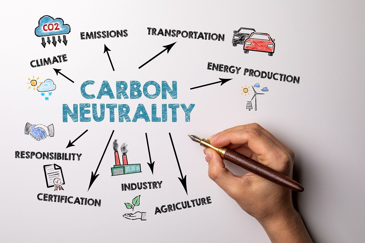 Why you should become carbon neutral